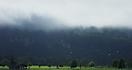 Schloss-Neuschwanstein im Nebel
