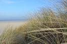 In der Sanddüne